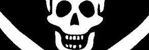 bandeau pirate 293x100 - Enquête - Le prix des données bancaires volées