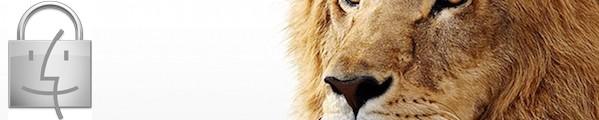 bandeau lion securite