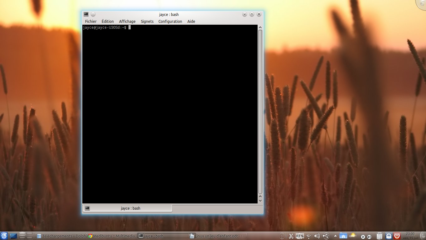 terminal - Linux : un jeu d'enfant  !
