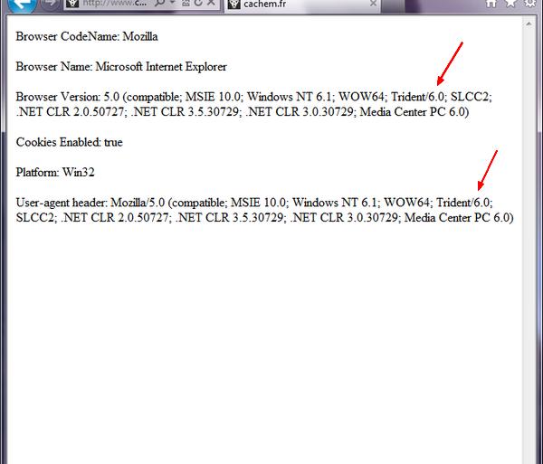 test navigateur 600x513 - Testez Internet Explorer 10