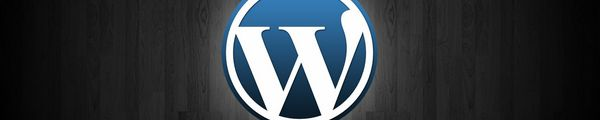 wordpress - Wordpress 3.4 en 5 points