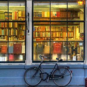 bibliotheque 293x293 - ebooks gratuits, ePub et DRM
