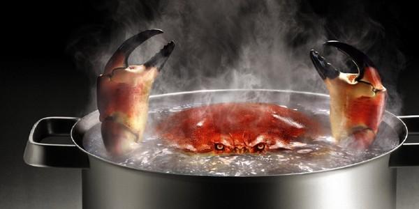 cuisine crabe - Application exceptionnelle pour des mets d'exception