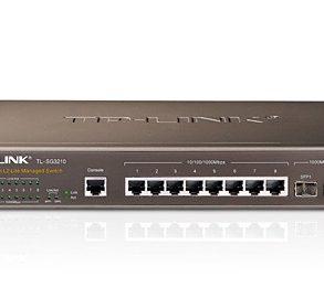 TP Link TL SG3210 293x270 - NAS - Augmenter les performances réseaux