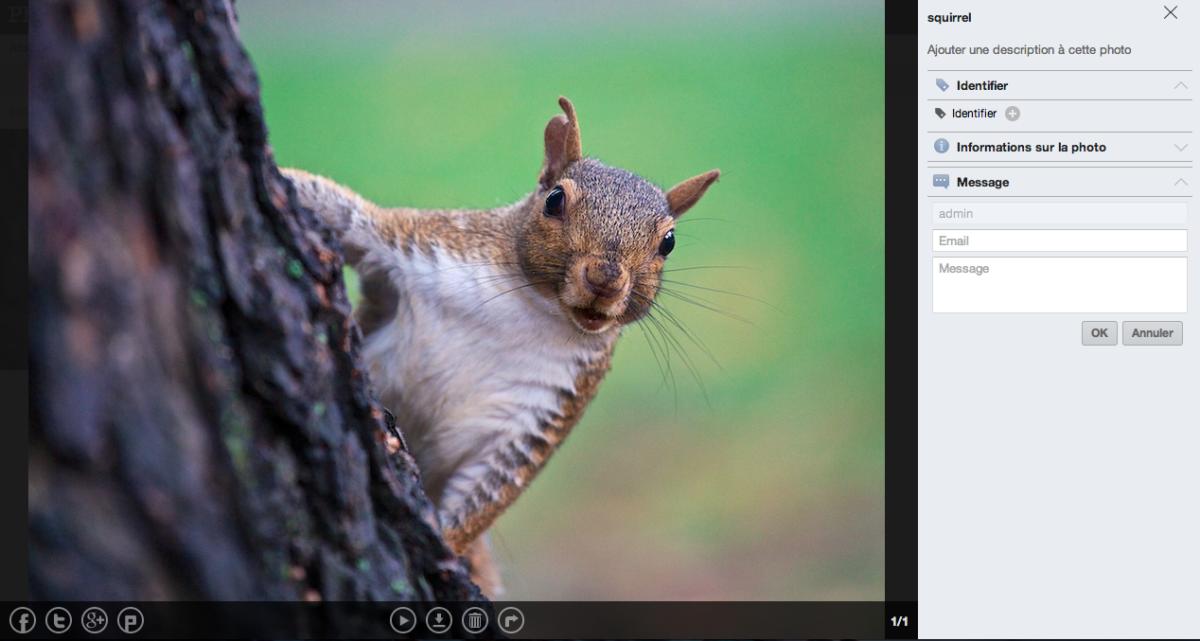 photogallery edition partage photos - ASUSTOR ADM 2.2 Beta, le premier test