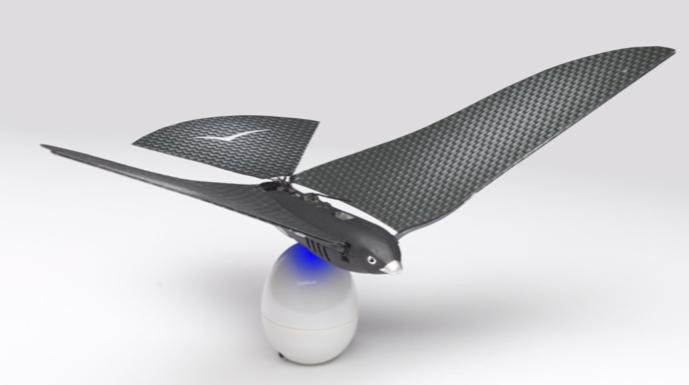 BionicBird3 - [MAJ] - Avitron - L'oiseau bionique...