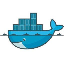 fbbb494a7eef5f9278c6967b6072ca3e 256x247 - Docker pour les nuls - la révolution du conteneur