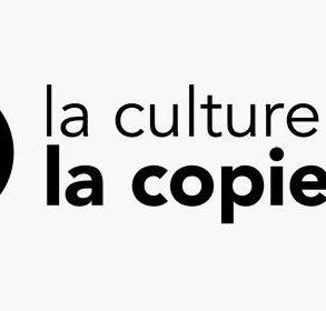copie privee 293x280 - Entretien avec Mathieu Gasquy (Western Digital) sur la Commission copie privée