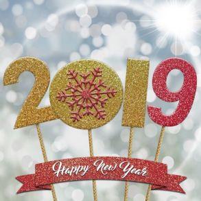 bonne annee 2019 293x293 - L'équipe Cachem vous souhaite une bonne année 2019 !