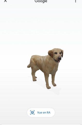 Golden 3D 338x513 - Android / iOS : Retrouvez-vous face à face avec cet animal