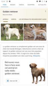 search golden 169x300 - Android / iOS : Retrouvez-vous face à face avec cet animal