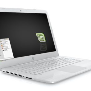 HP Stream 14 Linux Mint 293x293 - Linux Mint 20 sur un ancien ordinateur portable