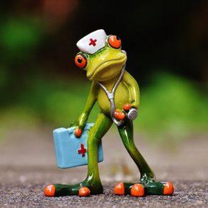 frog 293x293 - Et si le NAS tombe en panne, est-ce que je perds toutes mes données ?