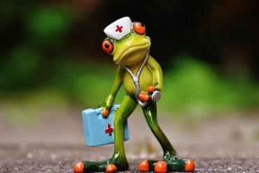 frog 370x247 - Et si le NAS tombe en panne, est-ce que je perds toutes mes données ?
