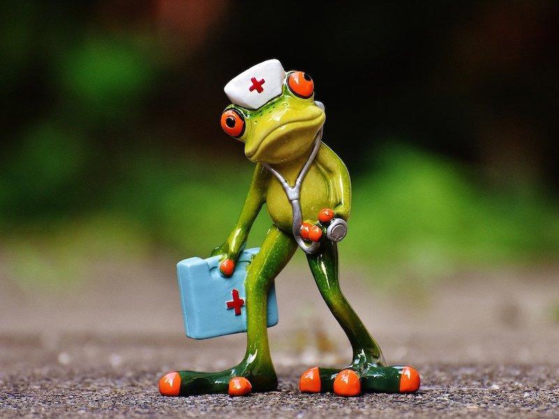 frog - Et si le NAS tombe en panne, est-ce que je perds toutes mes données ?