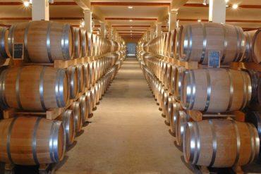 cave vin 2021 370x247 - Peut-on installer un NAS dans une cave ? Et dans un placard ?