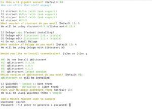 ecran installation 2 300x215 - Créer une Seedbox avec Quickbox (Kimsufi, VPS...)