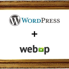 wordpress webp 293x293 - WebP et Wordpress (conversion, performance, perte de qualité...)