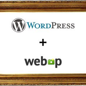 wordpress webp 293x293 - WebP et Wordpress (conversion, performance, perte de qualité...)