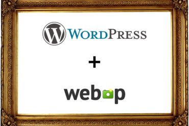 wordpress webp 370x247 - WebP et Wordpress (conversion, performance, perte de qualité...)
