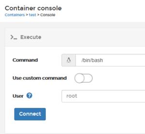 08 console 300x277 - Portainer : LA solution pour les conteneurs Docker (gratuite)
