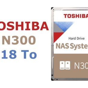 Toshiba N300 18 To